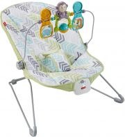 Кресло-качалка Fisher Price Baby's Bouncer DTG94